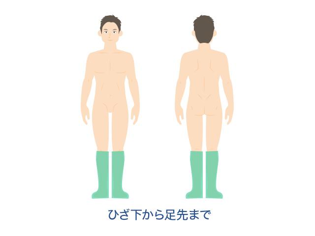 体~腕・足
